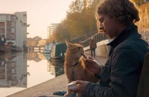 a-streetcat-named-bob-movie-650x365